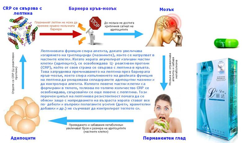 лида.net